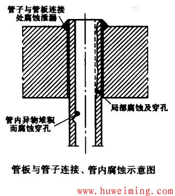 管子与管板的连接.png